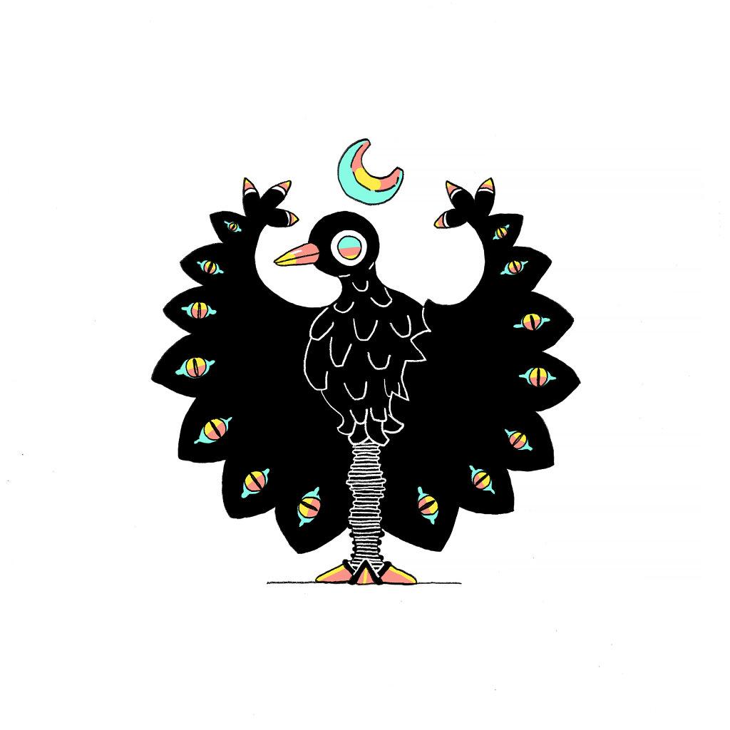 Black Bird Wizard
